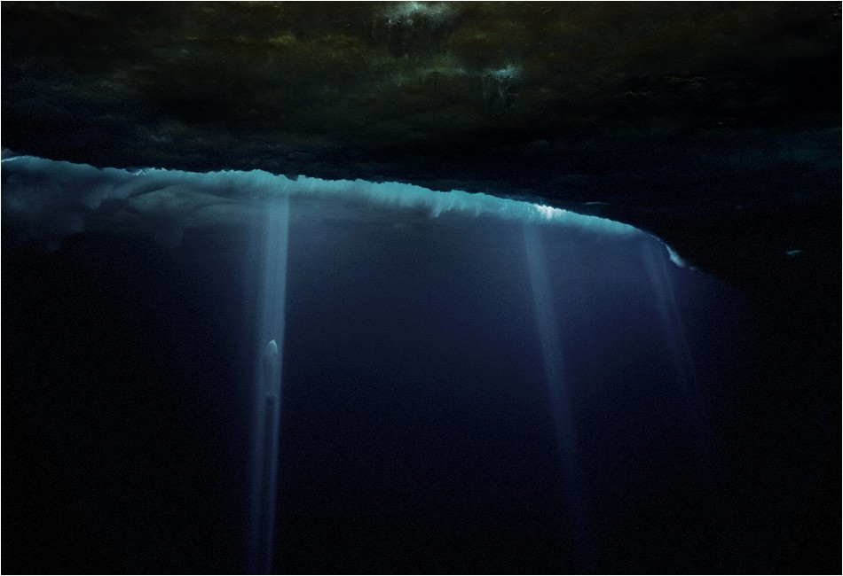 Shafts of Light and Weddell Seal